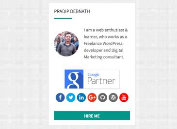 Owner Info Widget WordPress Plugin Portfolio